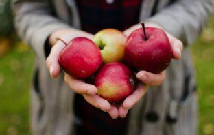 jedno jablko denne