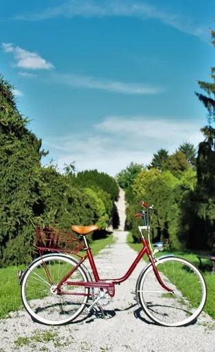 dovolenka na slovensku - na bicykli