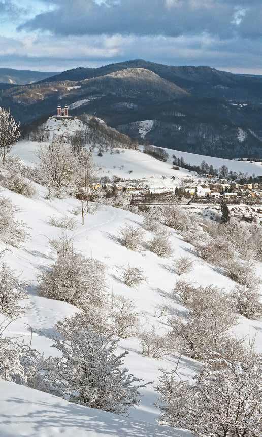 bežkovanie okolo Paradajsu v Štiavnických vrchoch