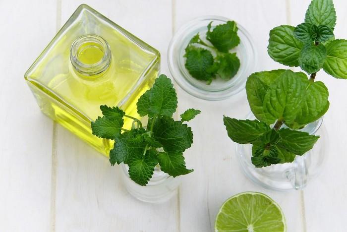 etericky olej pri liečbe rastlinami