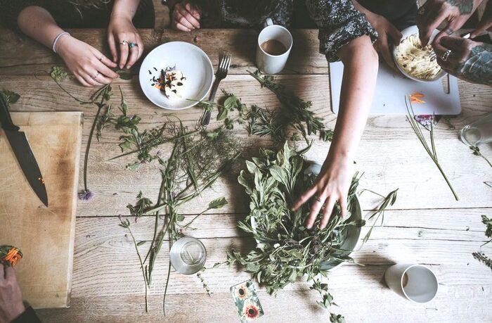 čo zaberá pri liečbe rastlinami?