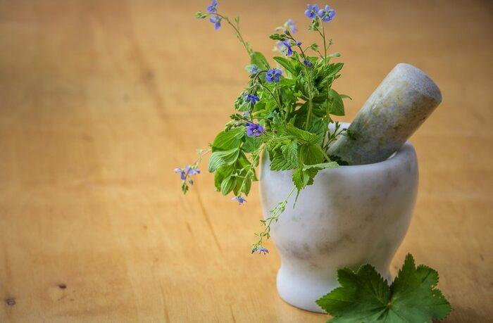 bylinky žlčník