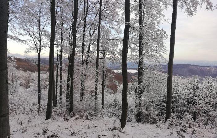 Strážovské vrchy v zime