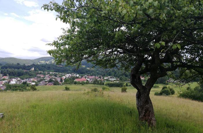 dedinka Mojtín