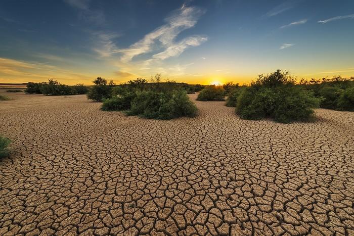 sucho potraviny teplejšia klíma
