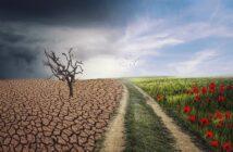 teplejšia klíma a dôsledky