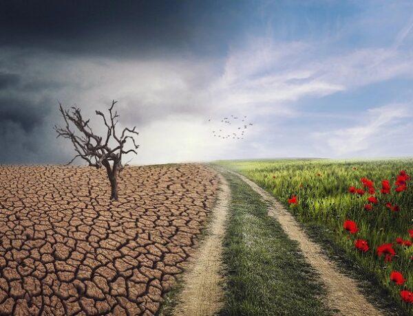 Bill Gates: Teplejšia klíma spôsobí týchto 6 veľkých problémov
