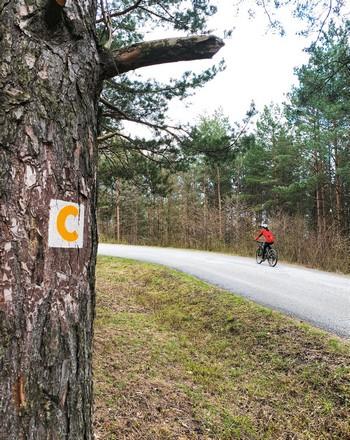 cyklovýlet Štefánikova magistrála