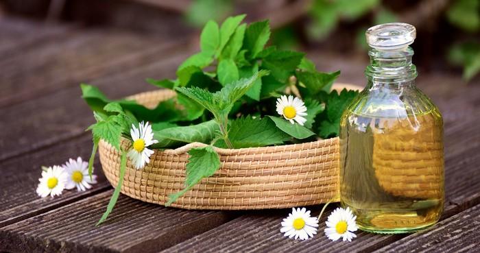 liečenie bylinami