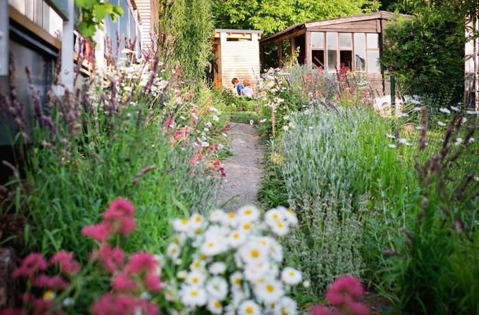 záhradný architekt radí